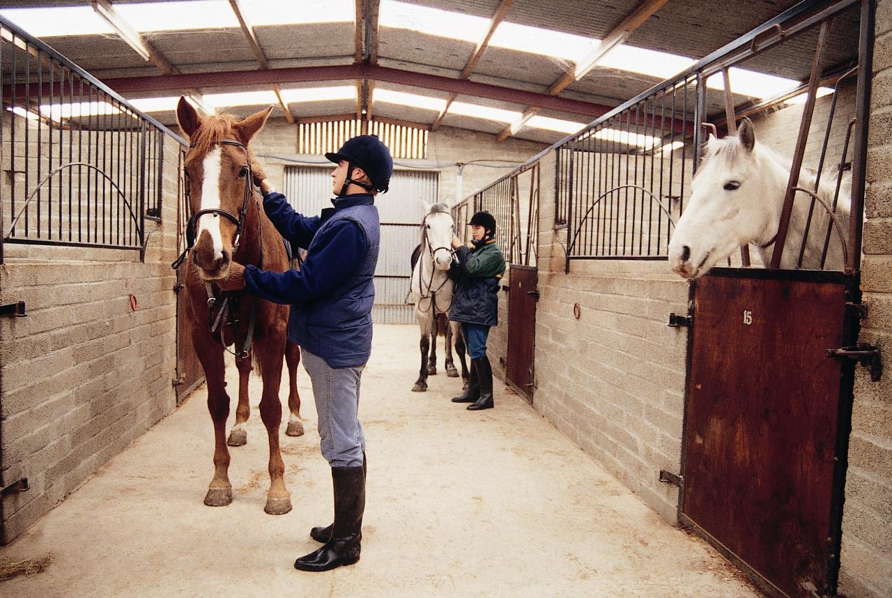 Секс в конюшне с конюхом 10 фотография